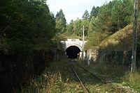 Lupkowski tunnel.JPG
