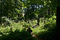 Lychakiv Cemetery (09).jpg