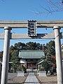MATSUBUSHI-02.JPG