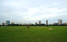 Kolkata skyline in background, with horses in a green field in the foreground