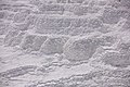 Mammoth Hot Springs detail 1.jpg