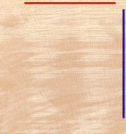 Hardwood (Maple), endgrain view