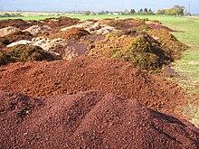 Photographie montrant un tas de marc de raisin en attente d'être distillé; il peut aussi être composté et être utilisé pour faire un apport de matière organique.