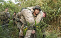 Marines train for pilot recovery in jungle 140825-M-AZ394-007.jpg