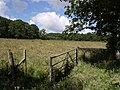 Meadow beside the Wagaford Water - geograph.org.uk - 494131.jpg