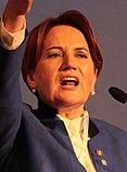 Meral Akşener İYİ Party 1 (cropped).jpg
