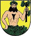 Mesto albrechtice-znak.jpg