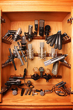Microphone Closet - In Your Ear Studios.jpg