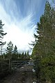 Millbuie Forest track gate - geograph.org.uk - 759360.jpg