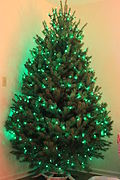 Minimalistic green Christmas tree.jpg