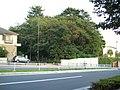 Mitakesan Tumulus (御岳山古墳) - panoramio.jpg