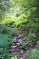 Moneypenny Creek 1.jpg
