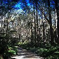 Monga National Park entrance.jpg