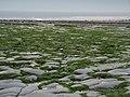Monknash beach tied out - panoramio - cowbridgeguide.co.uk.jpg
