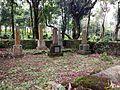 Morris family graves.jpg