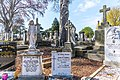 Mount Jerome Cemetery - 115274 (26515409151).jpg