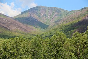 Mount Le Conte (Tennessee) - Mount LeConte from the Carlos Campbell Overlook