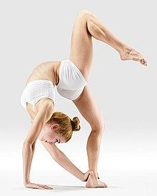 220px Mr yoga wild thing 2 yoga asanas Liste des exercices et position à pratiquer