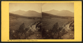 Mt. Adams and Madison, from near Glen House, N.H, by Pease, N. W. (Nathan W.), 1836-1918.png