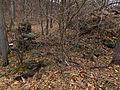 Muncaster Mill Gaithersburg MD USA Ruins 4.jpg