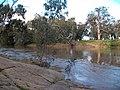 Murrumbidgee River - July 2010 (4).jpg