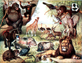 NSRW African Animals Enh.png