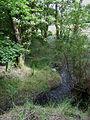 Nant Meidrum near Llangeitho, Ceredigion - geograph.org.uk - 915657.jpg