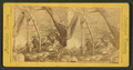 Nature's arch, Brandywine Creek, from Robert N. Dennis collection of stereoscopic views.png