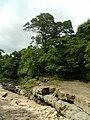 Near Boquete, Panama (9869488634).jpg