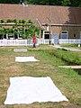 Nederlands Openluchtmuseum819.jpg