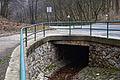 Neuburgbruecke B192200.jpg
