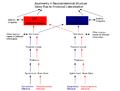 Neuroanatomical Basis for Emotional Lateralization.png