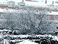 Nevando en Tudela.JPG