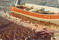 Newtok 1974 041 (7158849597).jpg