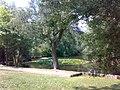 Nieder-Eschbach Ben Gurion Ring Teich im Park.jpg