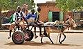 Niger, Filingué (29), donkey cart.jpg