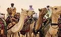 Niger, Toubou people at Koulélé (07).jpg