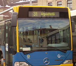 Number 31 bus in Pécs.jpg