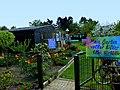 Oberhausen – Kleingartenanlage Rechenacker am 1. Mai 2013 – Der Garten Nr. 118 voller Bilder von Lilia Kuschelow – Tel. 0208-4090067 - panoramio.jpg