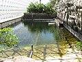 Océan Biosphère 2.JPG