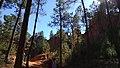 Ocres de Roussillon dans le Vaucluse 06.jpg