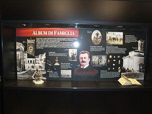 Ettore Arrigoni degli Oddi - Display Case in Museo Civico di Zoologia