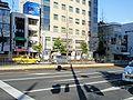 Okaden Nishigawaryokudokoen station 01.jpg