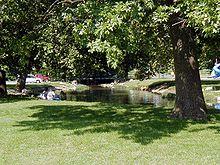 Ein von Bäumen umgebener Wasserstrahl