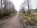 Old GWR line at Laymoor Quag - March 2013 - panoramio.jpg