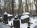 Old merchants' graves - panoramio.jpg