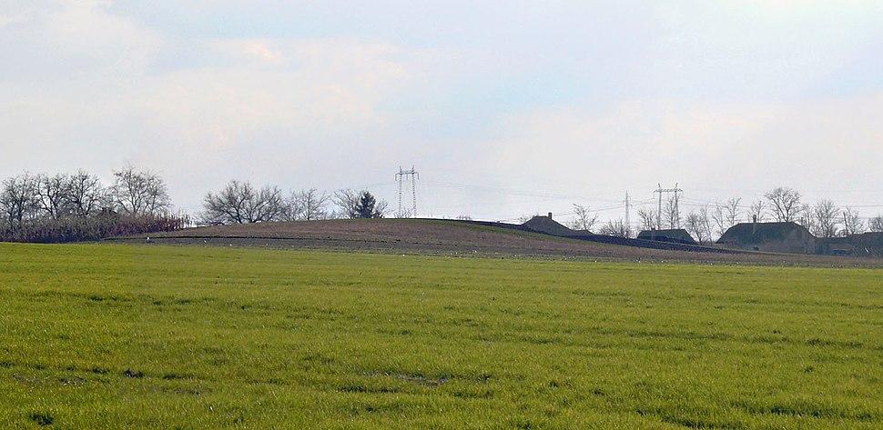 Old mound in Supljak, Vojvodina (Debelo brdo)