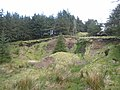 Old quarry in the forest on the slopes of Carrane Hill - geograph.org.uk - 799591.jpg