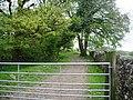 Old track near Boarsden - geograph.org.uk - 426289.jpg