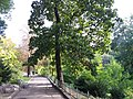 Oleksandr Fomin Botanical Garden (2017.10.07) 03.jpg